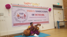 20_veena-indian-music-performance