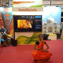 Danish Travel Show 14