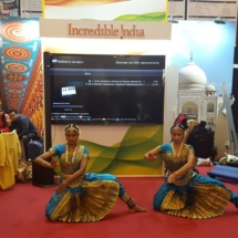 Danish Travel Show 8
